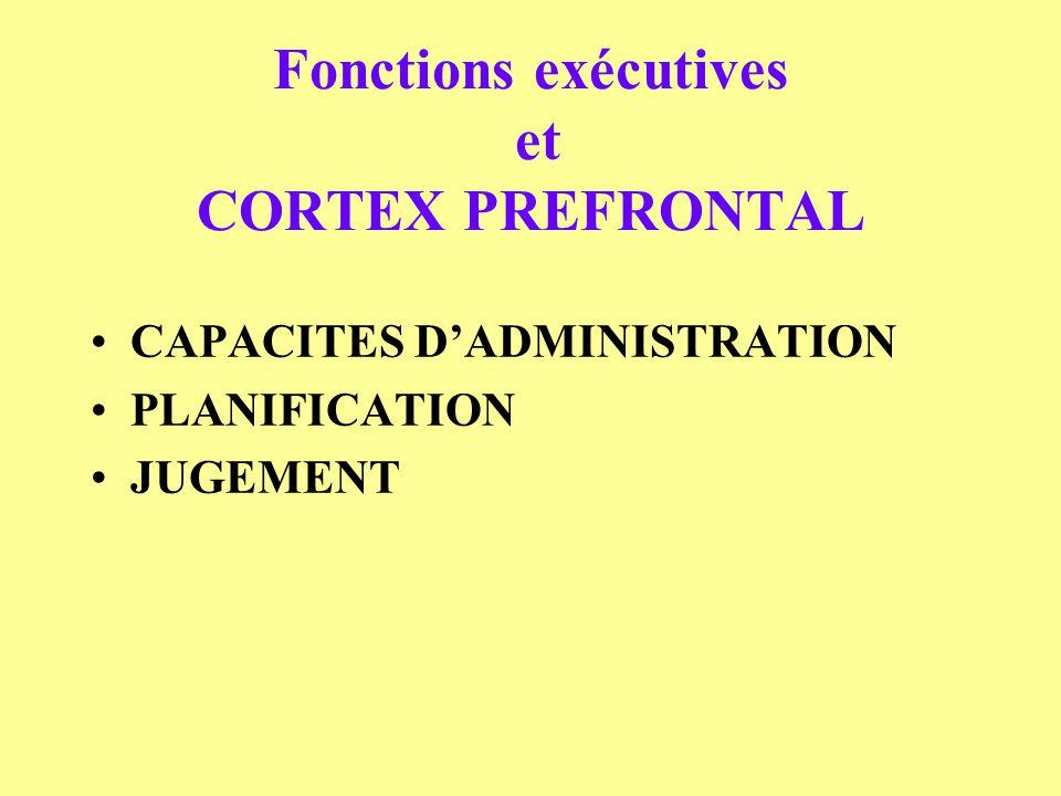 Fonctions exécutives et CORTEX PREFRONTAL CAPACITES DADMINISTRATION PLANIFICATION JUGEMENT