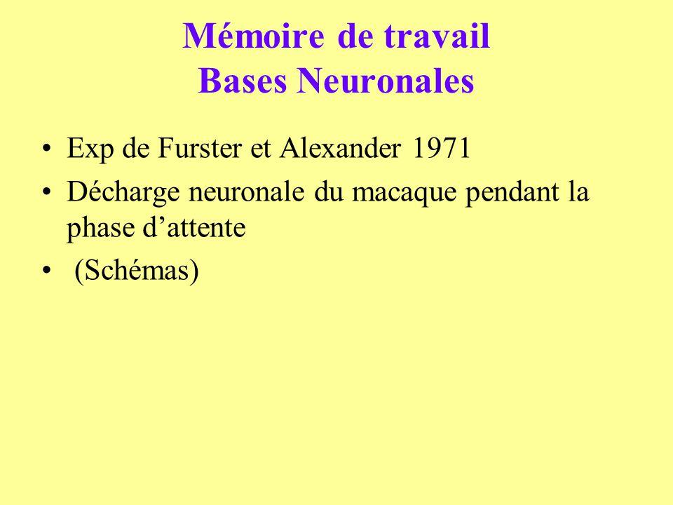 Mémoire de travail Bases Neuronales Exp de Furster et Alexander 1971 Décharge neuronale du macaque pendant la phase dattente (Schémas)
