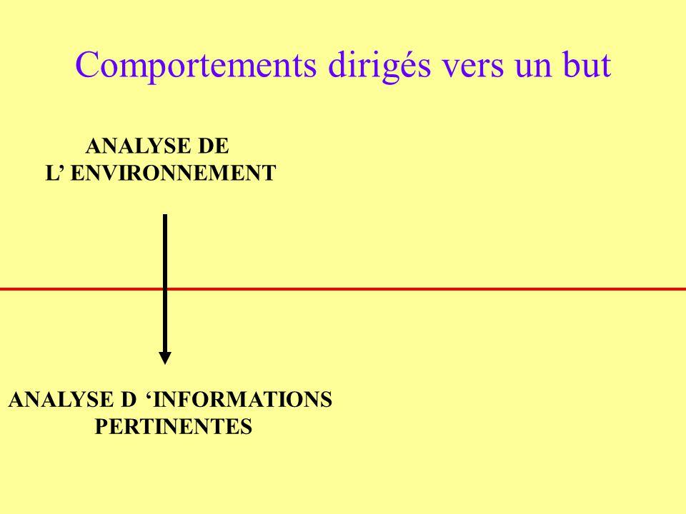 ANALYSE DE L ENVIRONNEMENT Comportements dirigés vers un but ANALYSE DINFORMATIONS PERTINENTES
