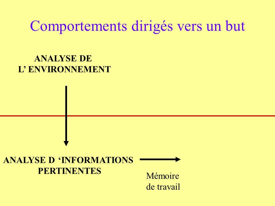 ANALYSE DE L ENVIRONNEMENT Comportements dirigés vers un but ANALYSE DINFORMATIONS PERTINENTES Mémoire de travail