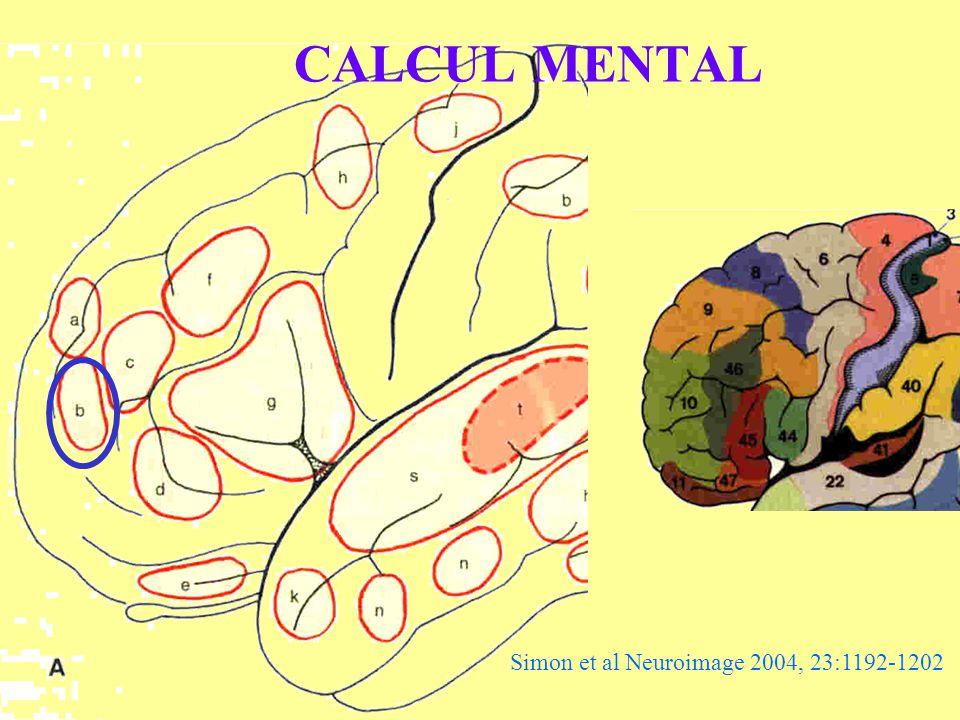 CALCUL MENTAL Simon et al Neuroimage 2004, 23:1192-1202