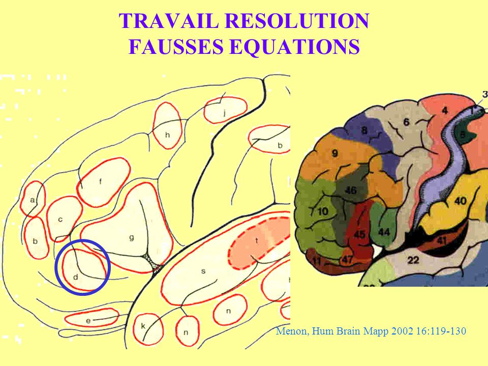 TRAVAIL RESOLUTION FAUSSES EQUATIONS Menon, Hum Brain Mapp 2002 16:119-130