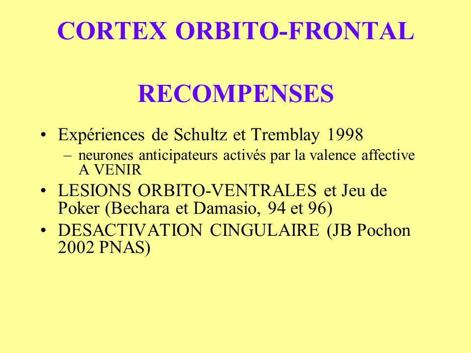 CORTEX ORBITO-FRONTAL RECOMPENSES Expériences de Schultz et Tremblay 1998 –neurones anticipateurs activés par la valence affective A VENIR LESIONS ORB