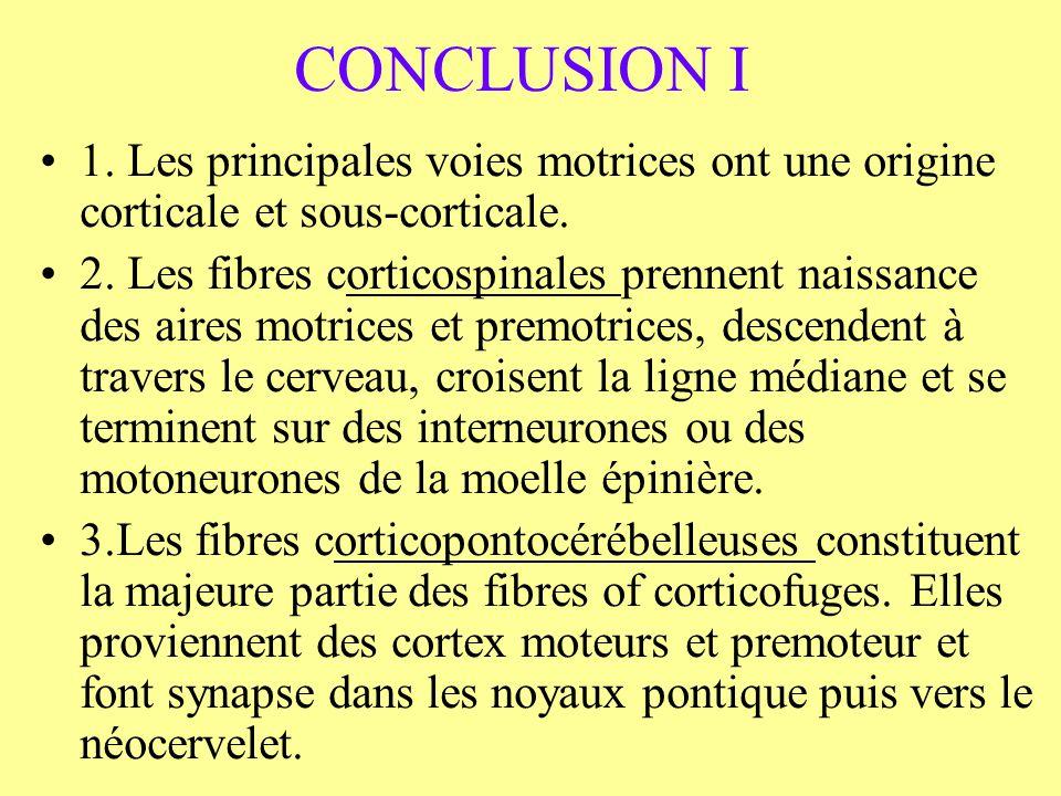 CONCLUSION I 1. Les principales voies motrices ont une origine corticale et sous-corticale. 2. Les fibres corticospinales prennent naissance des aires