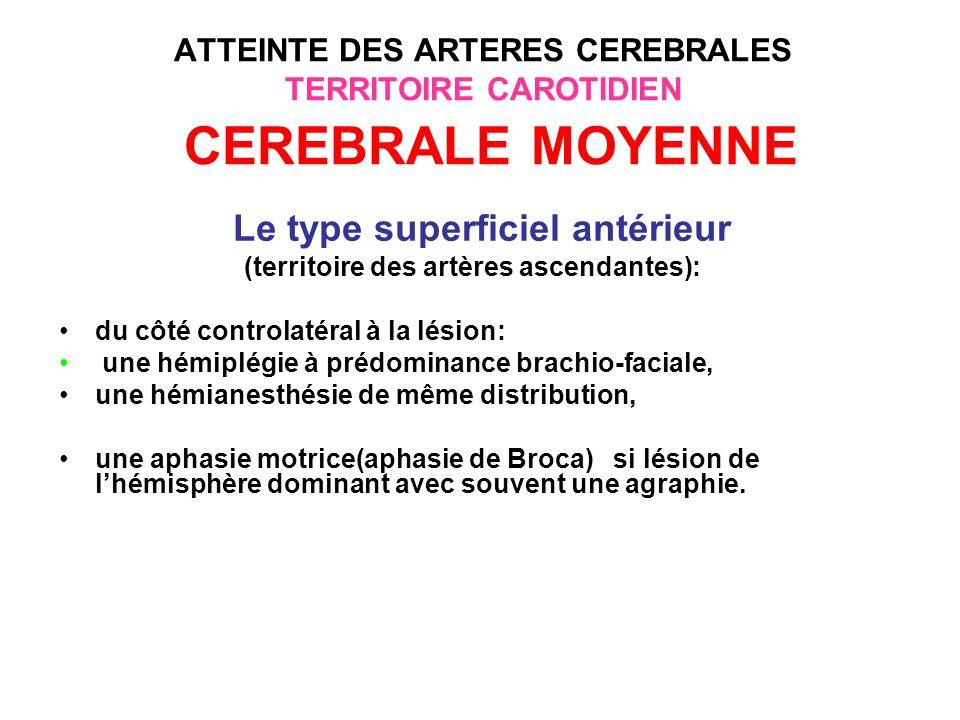 ATTEINTE DES ARTERES CEREBRALES TERRITOIRE CAROTIDIEN CEREBRALE MOYENNE Le type superficiel postérieur (territoire de lartère temporo-pli-courbe), du côté controlatéral à la lésion le tableau peut associer: une hémianopsie latérale homonyme par atteinte des radiations optiques ou une hémianopsie du quadrant supérieur ou inférieur, une aphasie sensorielle ( aphasie de Wernicke) si lhémisphère dominant est touché, des troubles praxiques et gnosiques si lhémisphère mineur est touché.