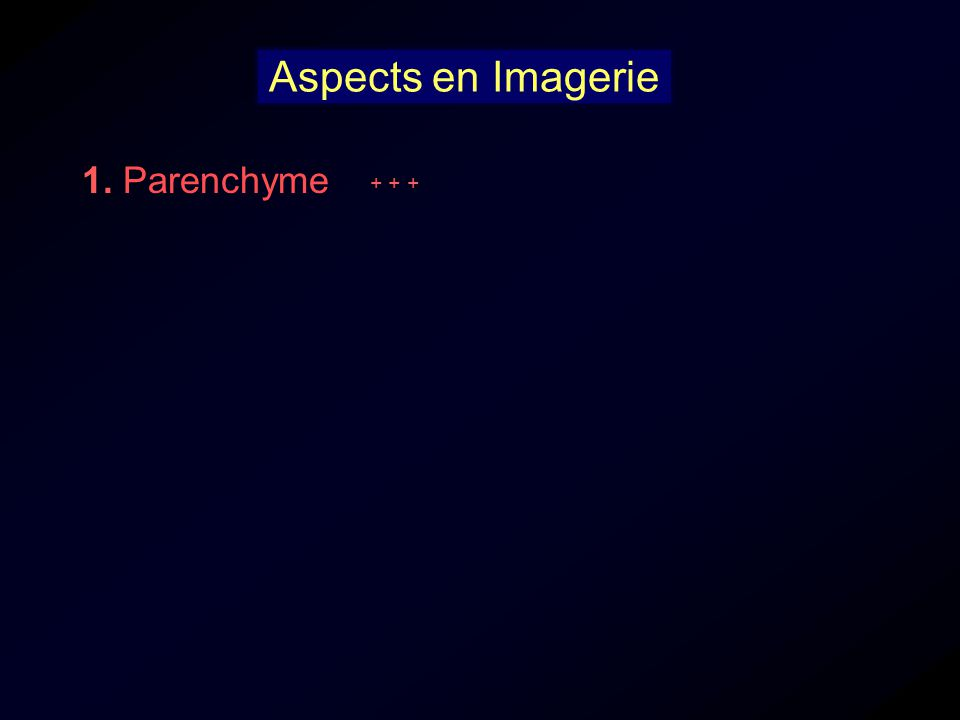 Aspects en Imagerie 1. Parenchyme + + +