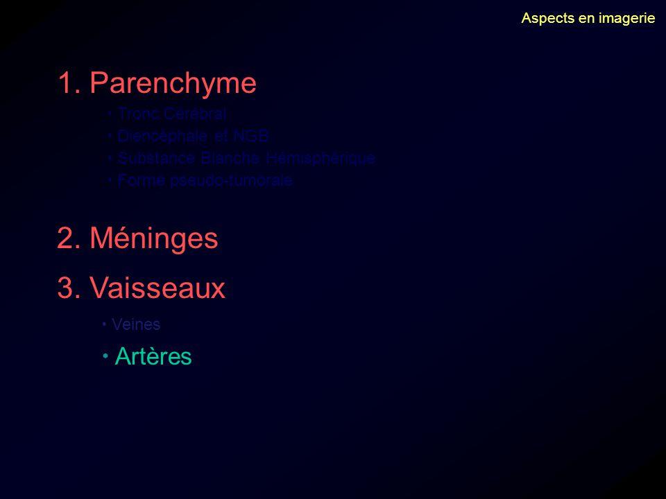 1. Parenchyme Tronc Cérébral Diencéphale et NGB Substance Blanche Hémisphérique Forme pseudo-tumorale 2. Méninges 3. Vaisseaux Veines Artères Aspects