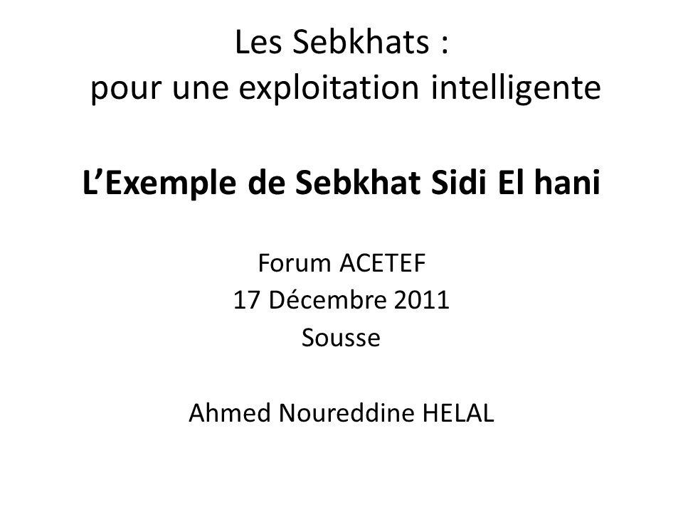 Les Sebkhats : pour une exploitation intelligente LExemple de Sebkhat Sidi El hani Forum ACETEF 17 Décembre 2011 Sousse Ahmed Noureddine HELAL