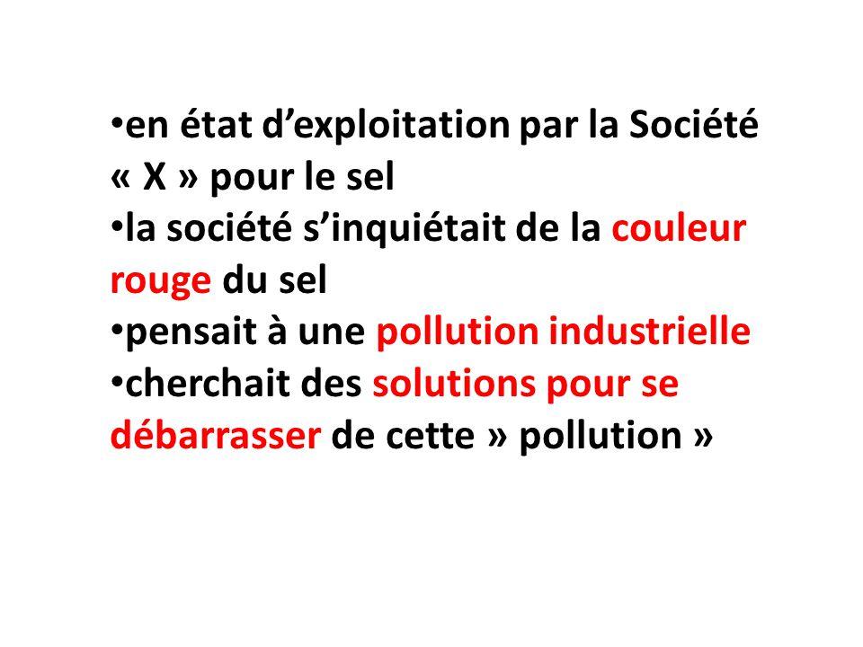 en état dexploitation par la Société « X » pour le sel la société sinquiétait de la couleur rouge du sel pensait à une pollution industrielle cherchai