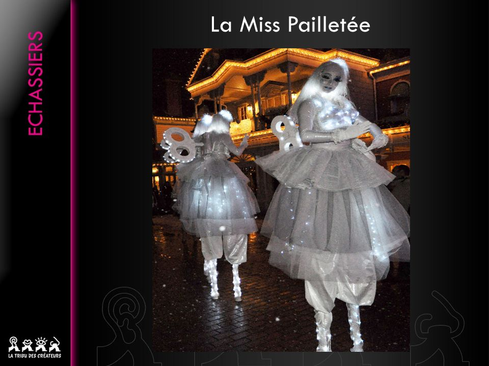 Notre Miss Pailletée peut être accompagnée de plusieurs autres personnages, tout aussi délicats et pailletés quelle…