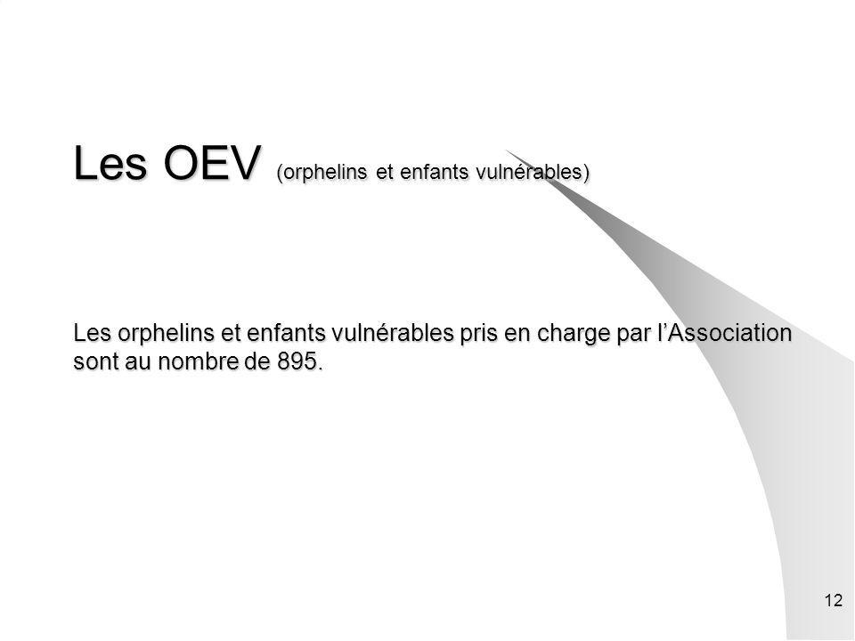 12 Les OEV (orphelins et enfants vulnérables) Les orphelins et enfants vulnérables pris en charge par lAssociation sont au nombre de 895.
