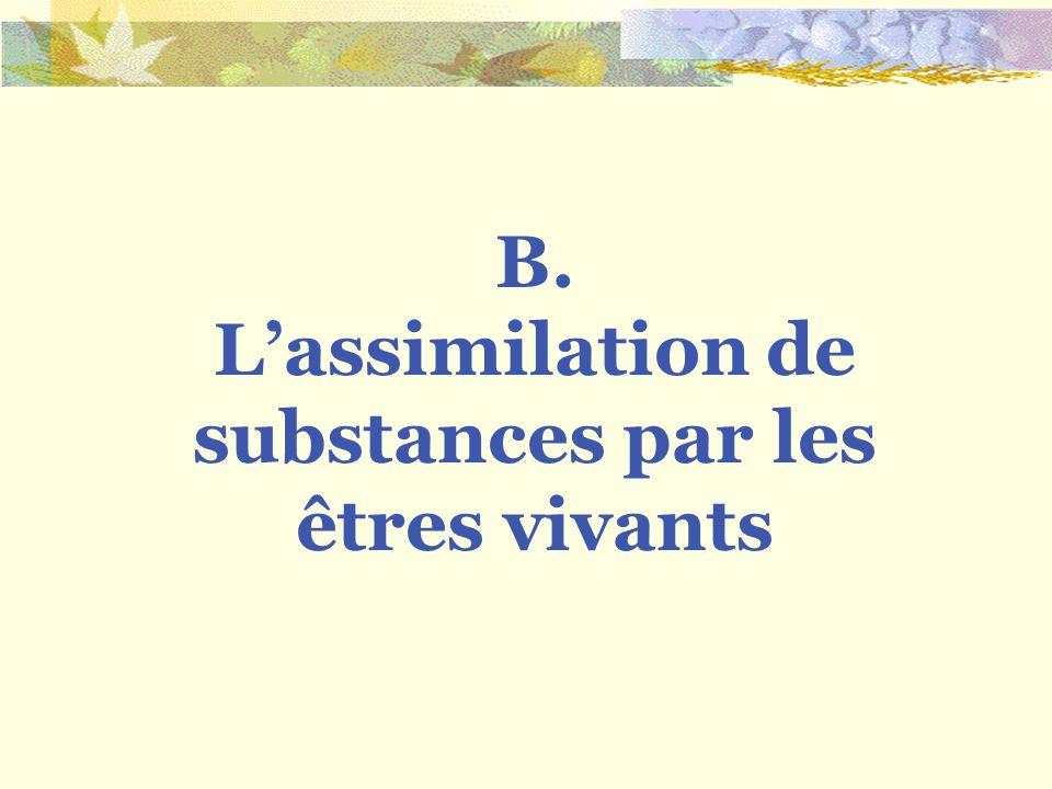 B. Lassimilation de substances par les êtres vivants