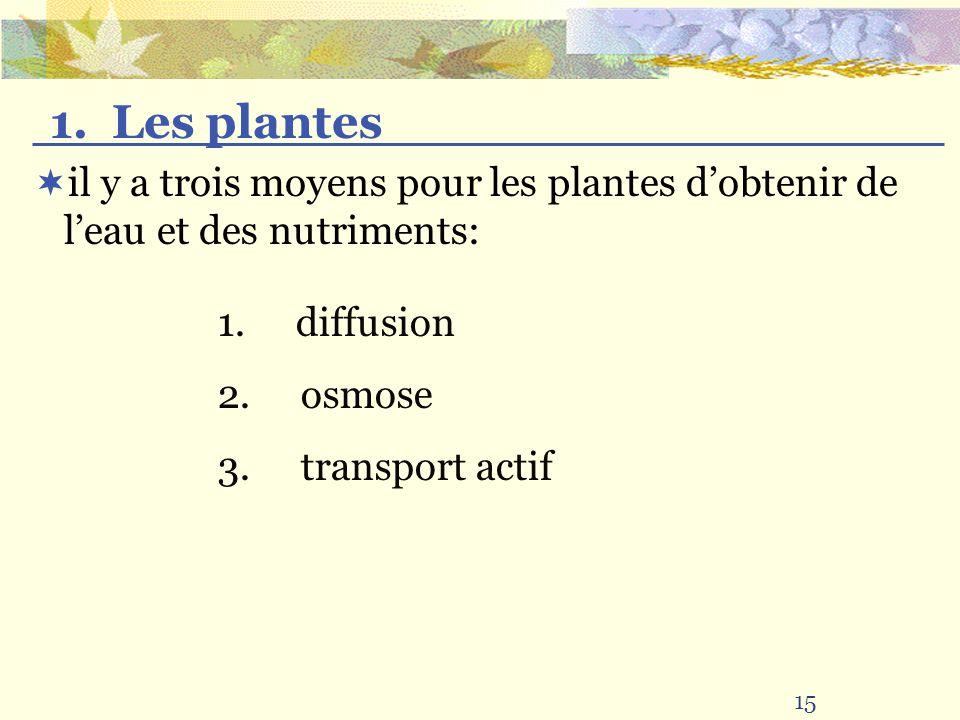 il y a trois moyens pour les plantes dobtenir de leau et des nutriments: 15 1. Les plantes 1. diffusion 2. osmose 3. transport actif