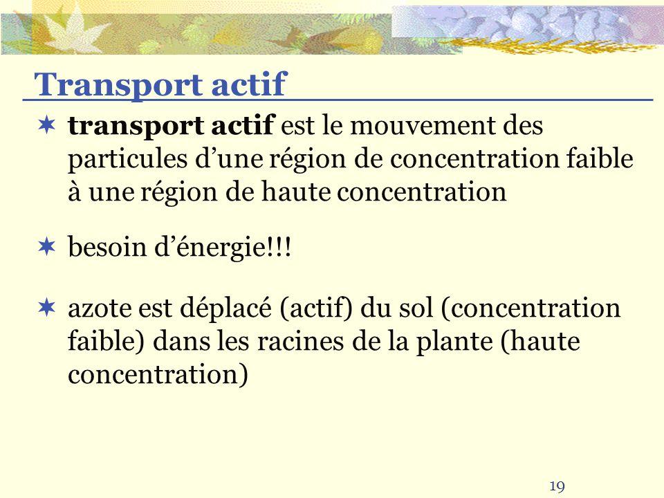 19 transport actif est le mouvement des particules dune région de concentration faible à une région de haute concentration Transport actif besoin dénergie!!.