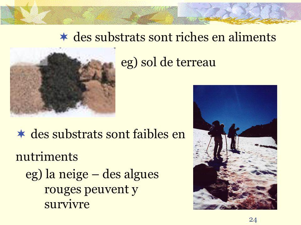 24 des substrats sont riches en aliments eg) sol de terreau des substrats sont faibles en nutriments eg) la neige – des algues rouges peuvent y surviv