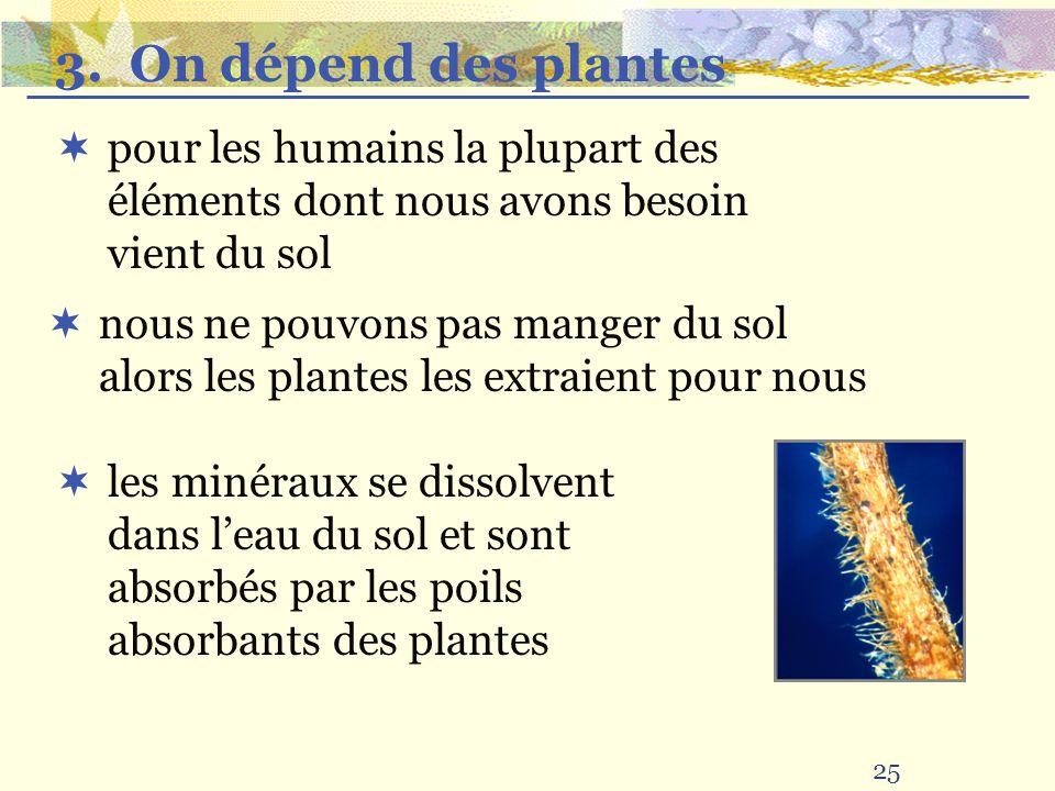 25 pour les humains la plupart des éléments dont nous avons besoin vient du sol nous ne pouvons pas manger du sol alors les plantes les extraient pour