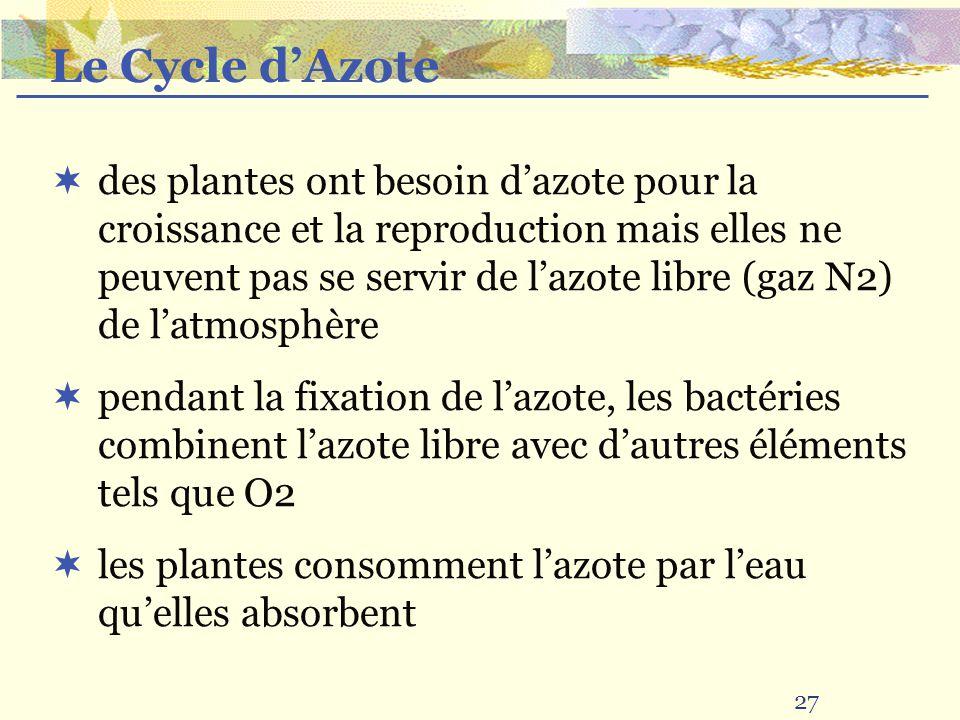 27 des plantes ont besoin dazote pour la croissance et la reproduction mais elles ne peuvent pas se servir de lazote libre (gaz N2) de latmosphère pendant la fixation de lazote, les bactéries combinent lazote libre avec dautres éléments tels que O2 les plantes consomment lazote par leau quelles absorbent Le Cycle dAzote