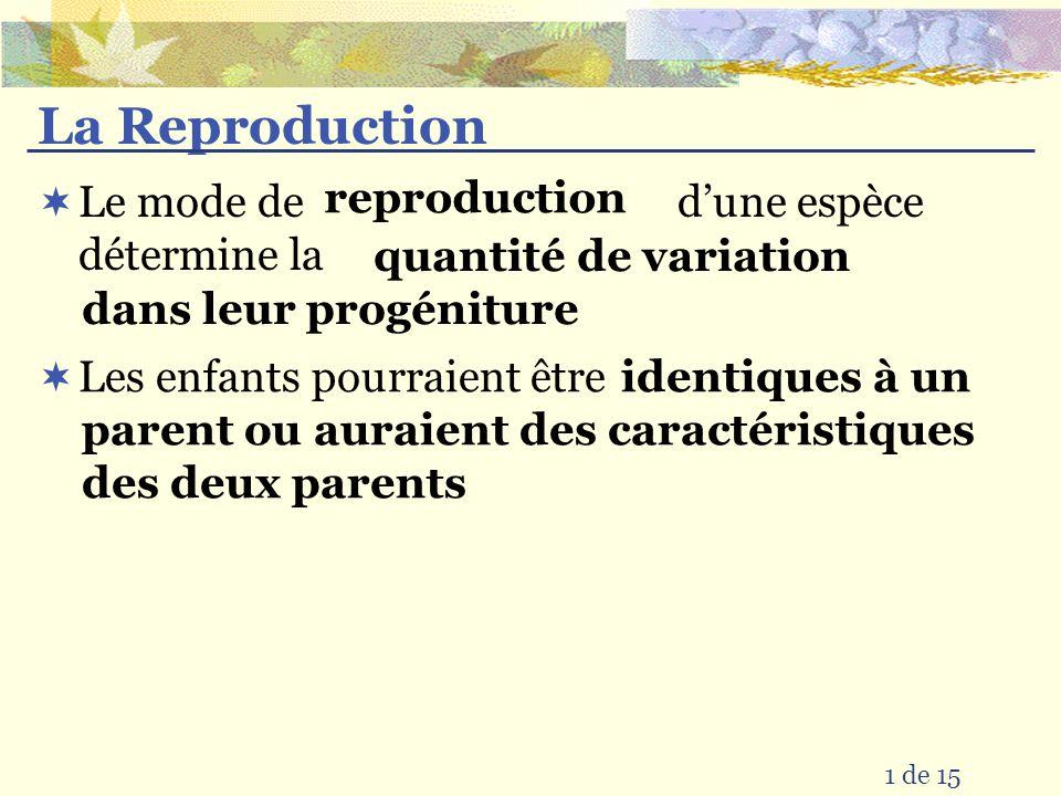 La Reproduction Le mode de dune espèce détermine la 1 de 15 Les enfants pourraient être quantité de variation dans leur progéniture reproduction identiques à un parent ou auraient des caractéristiques des deux parents
