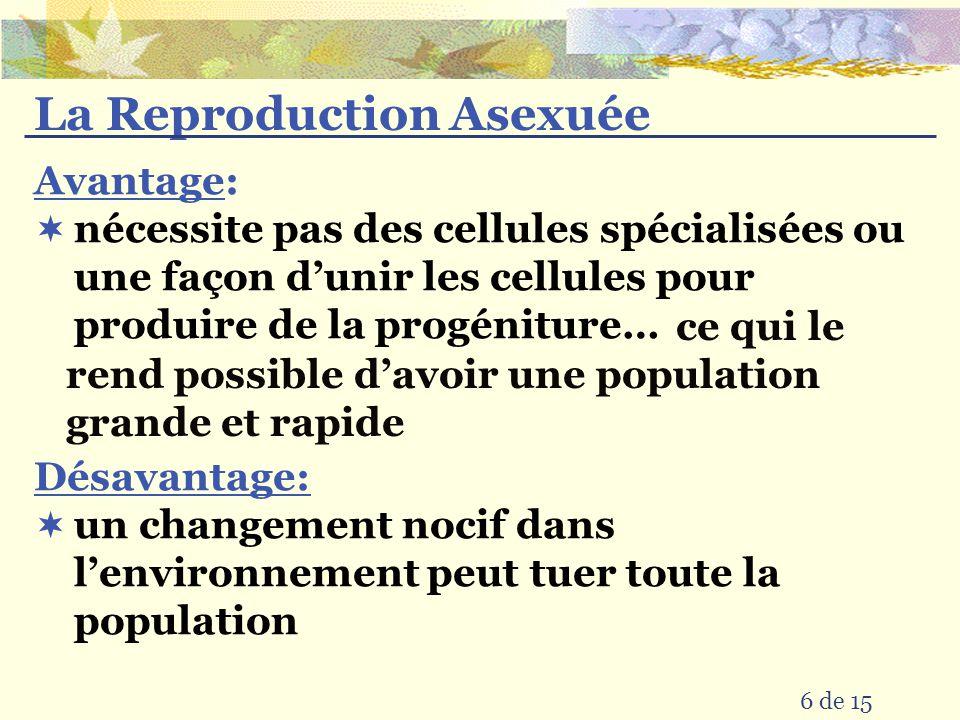 La Reproduction Asexuée 6 de 15 Désavantage: Avantage: ce qui le rend possible davoir une population grande et rapide nécessite pas des cellules spécialisées ou une façon dunir les cellules pour produire de la progéniture… un changement nocif dans lenvironnement peut tuer toute la population