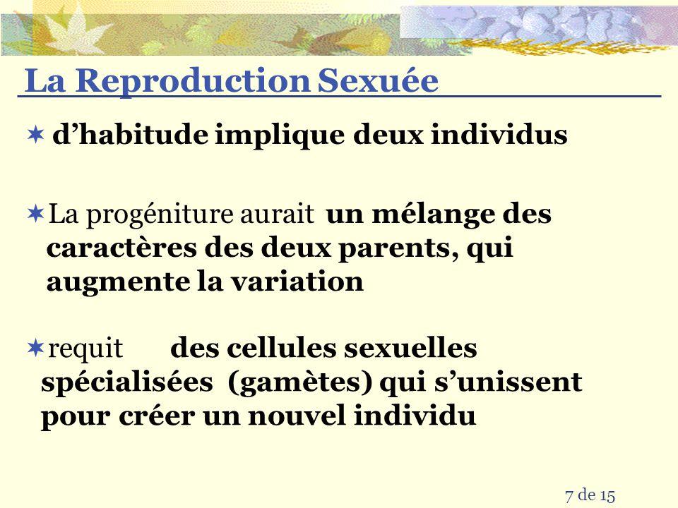 La Reproduction Sexuée 15 de 15 Désavantage: Avantage: beaucoup de variation qui aide lespèce à survivre des changements dans lenvironnement requit beaucoup dénergie et temps pour développer les « bébés » alors les nombres sont limités