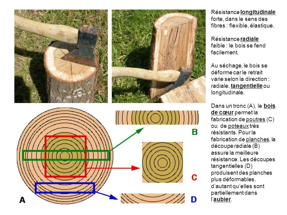 Structure et découpe Résistance longitudinale forte, dans le sens des fibres : flexible, élastique. Résistance radiale faible : le bois se fend facile