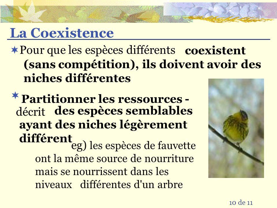 La Coexistence Pour que les espèces différents 10 de 11 décrit eg) les espèces de fauvette ont la même source de nourriture mais se nourrissent dans les niveaux différentes d un arbre coexistent (sans compétition), ils doivent avoir des niches différentes des espèces semblables ayant des niches légèrement différent Partitionner les ressources -