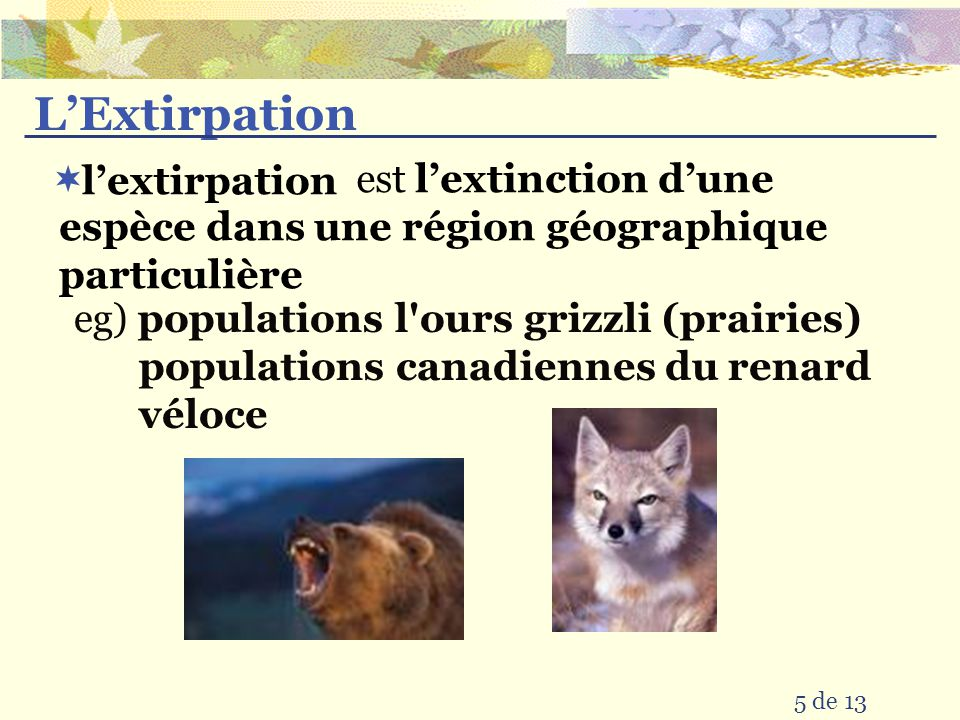 4 de 13 la dernière extinction a eu lieu la plupart nen sont pas mais se sont arrivés les extinctions se passent il y a 1.8 million années pendant la période glaciaire massives au cours des longues périodes de temps à un taux plus élevé alors que la Terre perd plus vite sa biodiversité