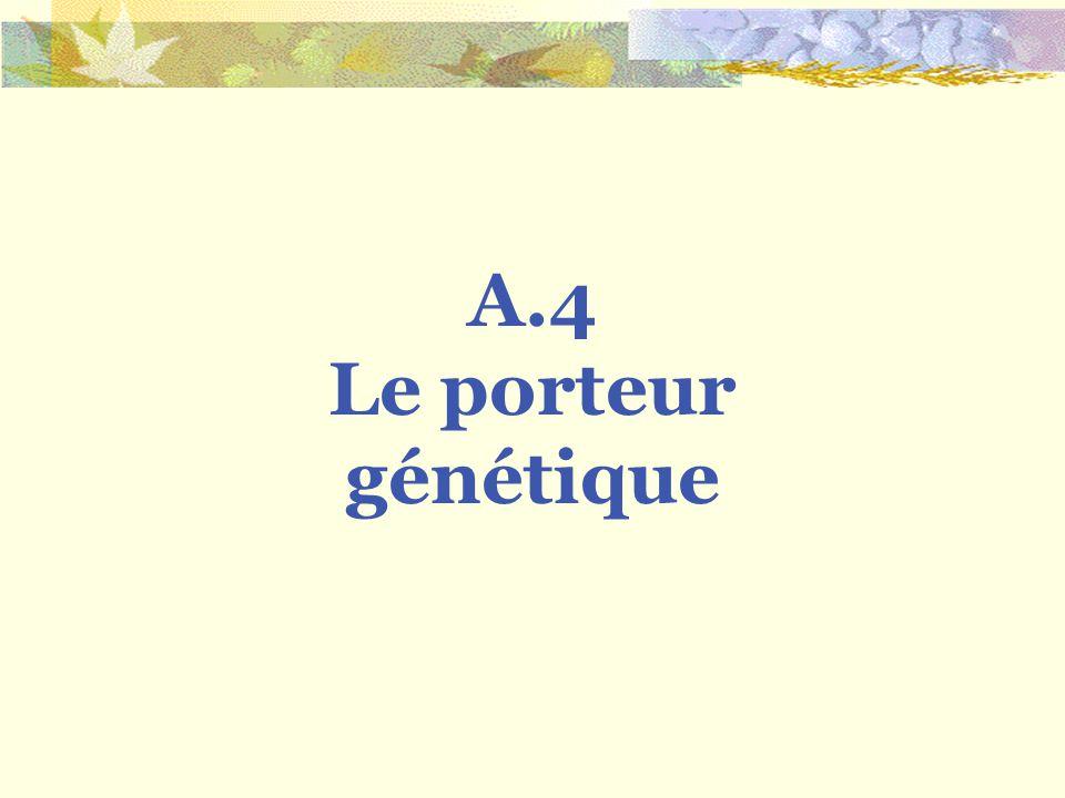 A.4 Le porteur génétique