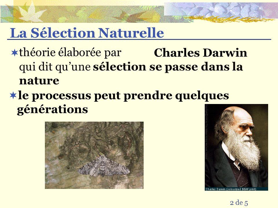 La Sélection Naturelle Charles Darwin 2 de 5 qui dit quune sélection se passe dans la nature le processus peut prendre quelques générations théorie él