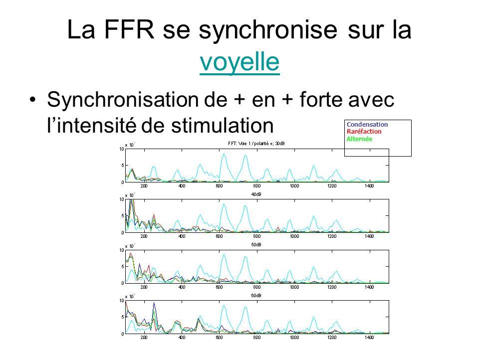 La FFR se synchronise sur la voyelle voyelle Synchronisation de + en + forte avec lintensité de stimulation Condensation Raréfaction Alternée