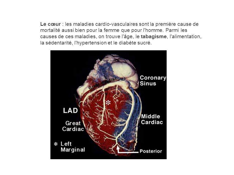 Le cœur : les maladies cardio-vasculaires sont la première cause de mortalité aussi bien pour la femme que pour l'homme. Parmi les causes de ces malad
