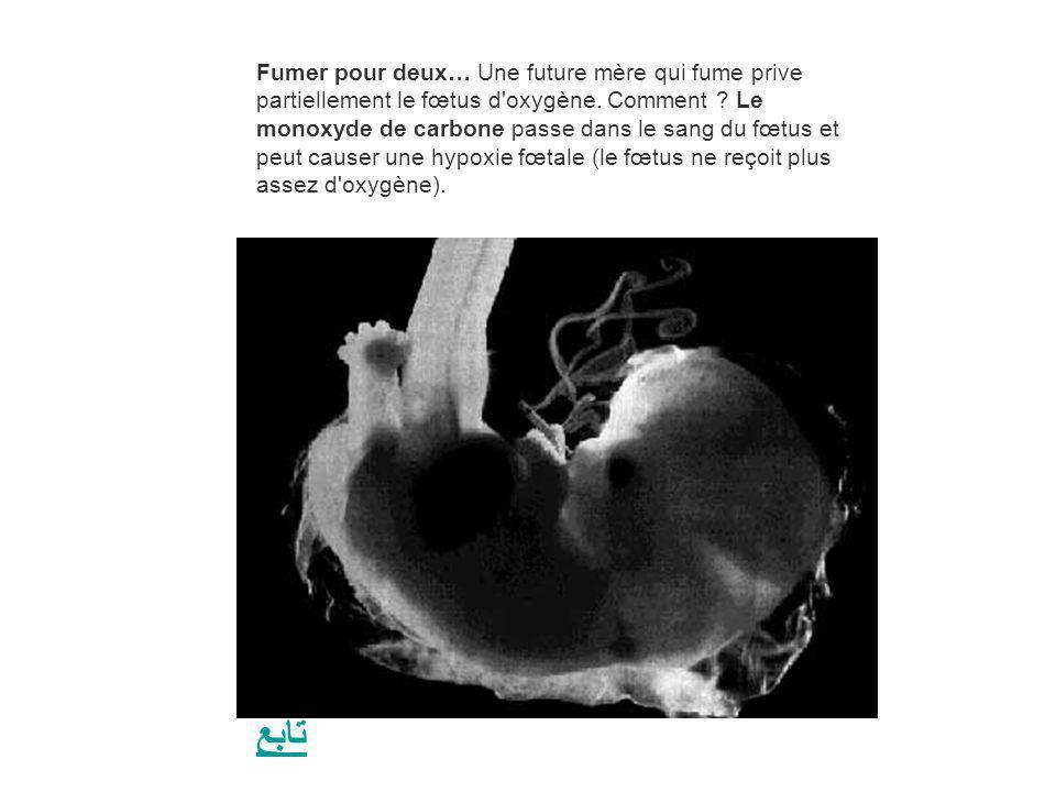 Fumer pour deux… Une future mère qui fume prive partiellement le fœtus d'oxygène. Comment ? Le monoxyde de carbone passe dans le sang du fœtus et peut