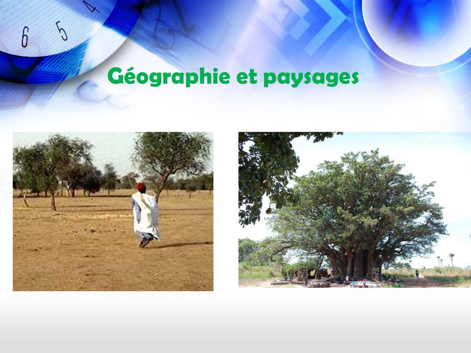 Le nord du pays fait partie du Sahel, une zone transitoire entre le Sahara et les savanes plus humides.