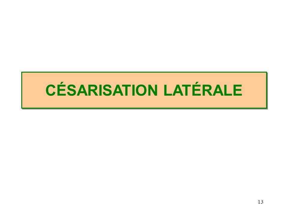13 CÉSARISATION LATÉRALE