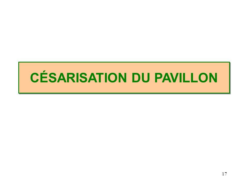 17 CÉSARISATION DU PAVILLON