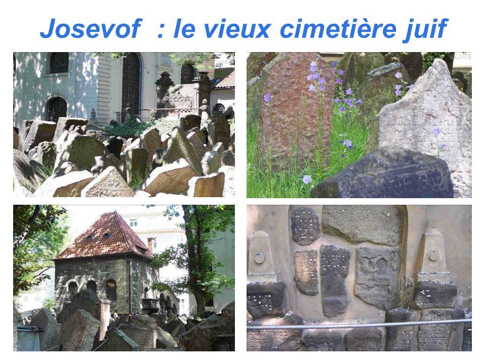 Josevof : le vieux cimetière juif
