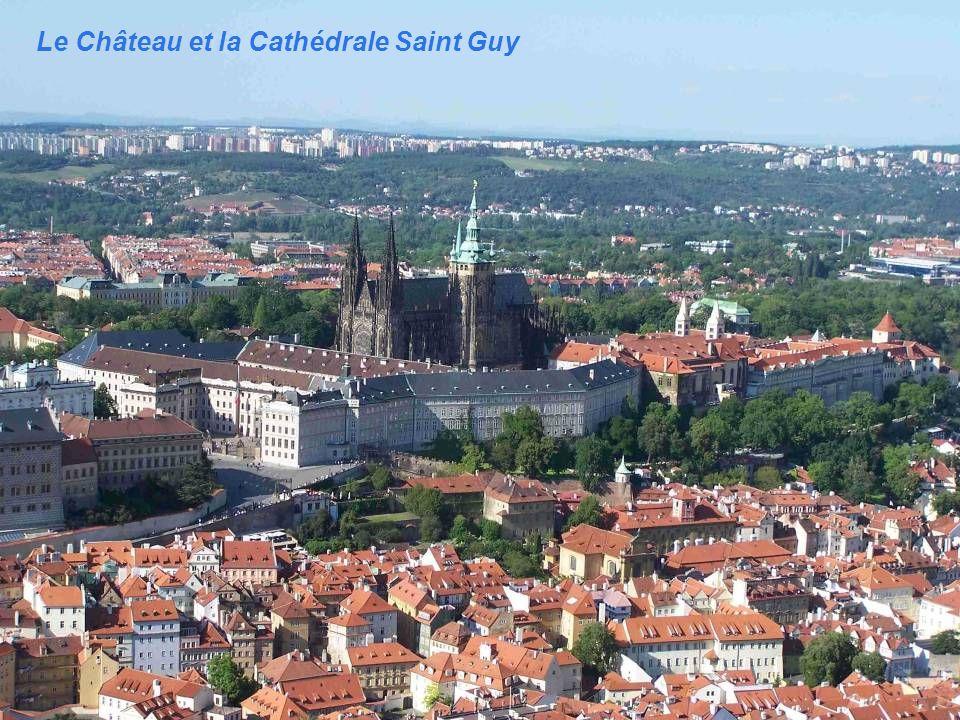 Le Château et la Cathédrale Saint Guy