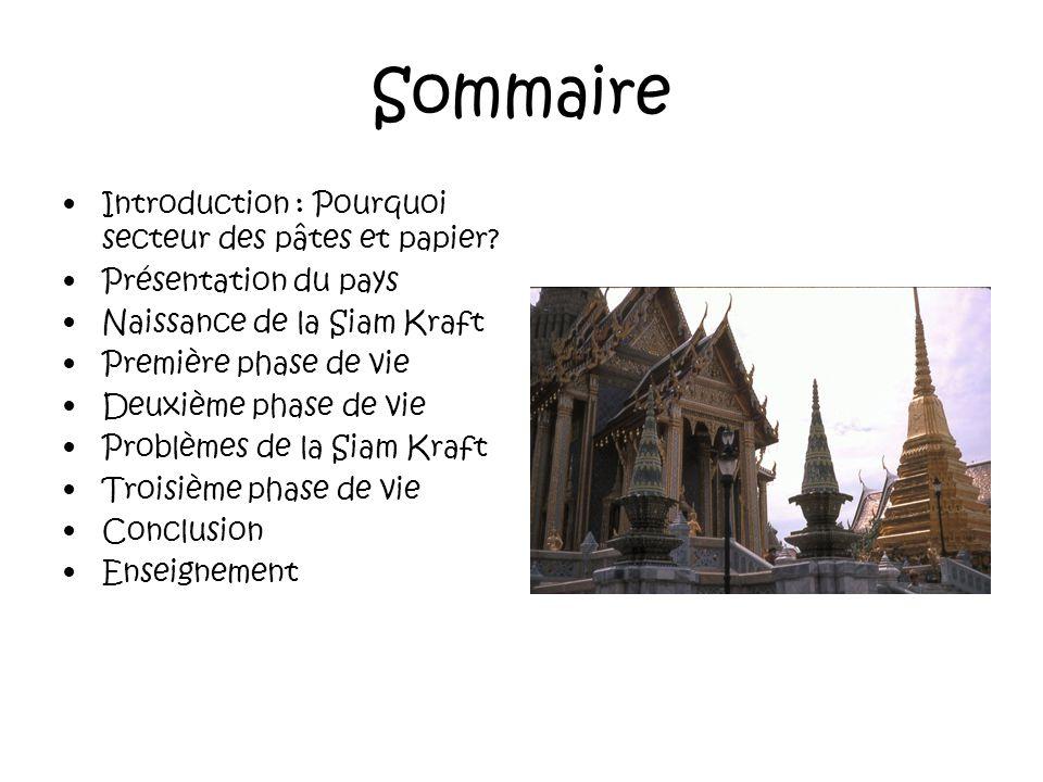 Sommaire Introduction : Pourquoi secteur des pâtes et papier.