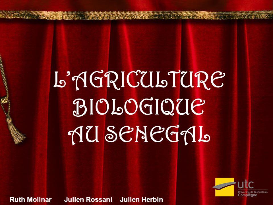 LAGRICULTURE BIOLOGIQUE AU SENEGAL Ruth MolinarJulien Rossani Julien Herbin