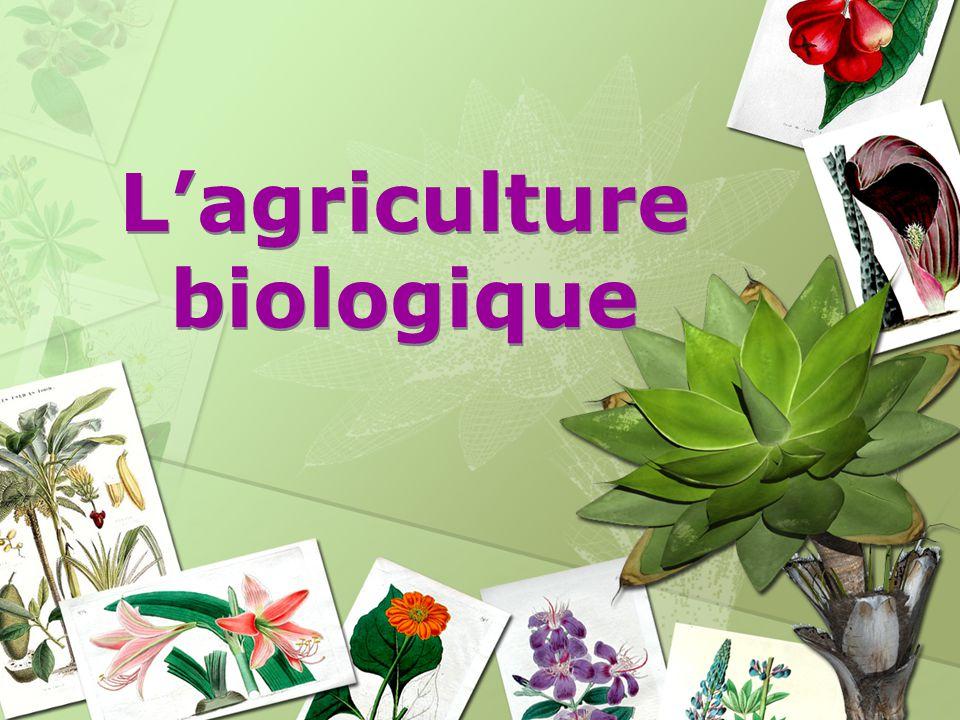 Lagriculture biologique