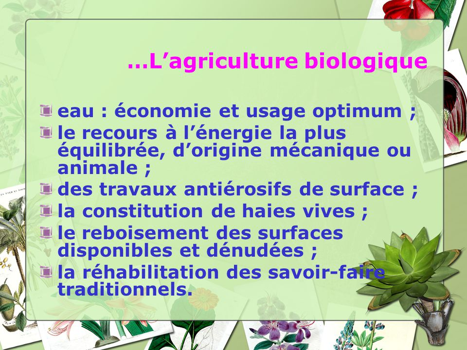 …Lagriculture biologique eau : économie et usage optimum ; le recours à lénergie la plus équilibrée, dorigine mécanique ou animale ; des travaux antié