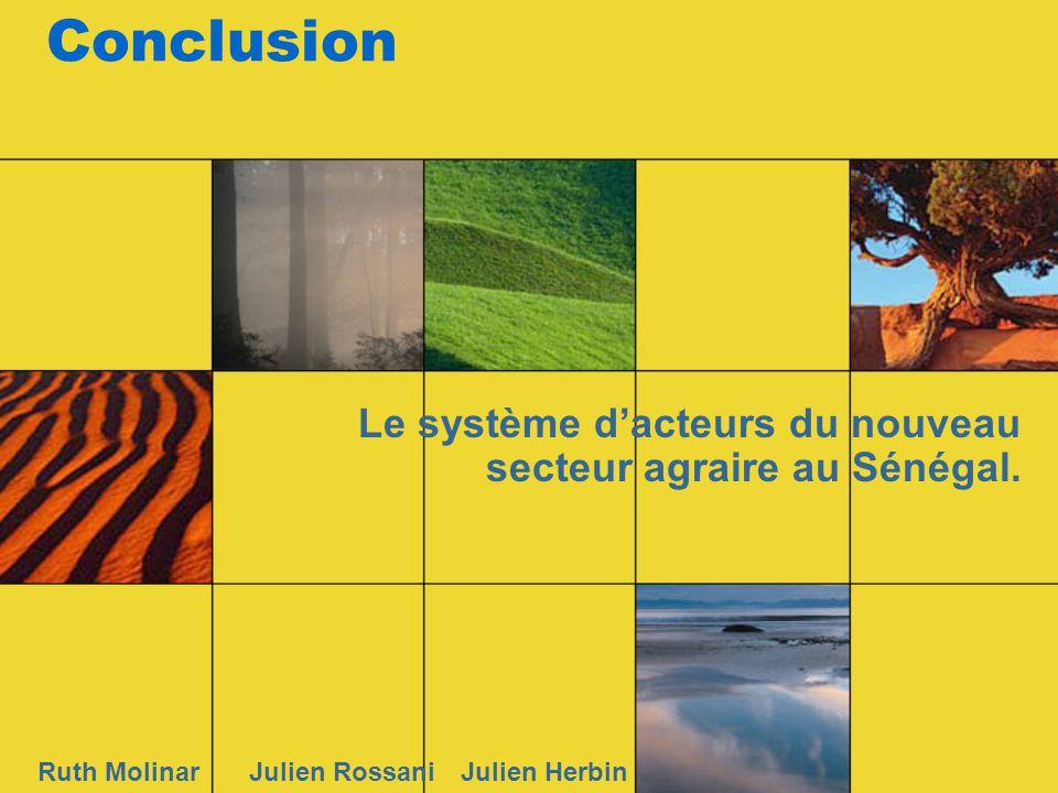 Conclusion Le système dacteurs du nouveau secteur agraire au Sénégal. Ruth MolinarJulien RossaniJulien Herbin