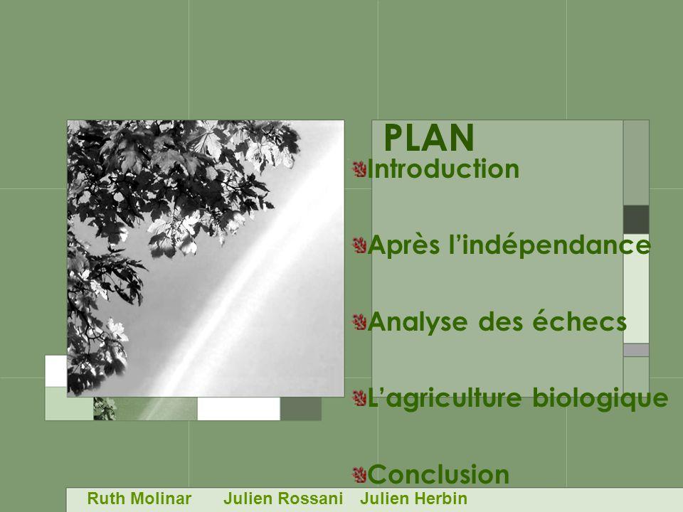 PLAN Introduction Après lindépendance Analyse des échecs Lagriculture biologique Conclusion Ruth MolinarJulien RossaniJulien Herbin