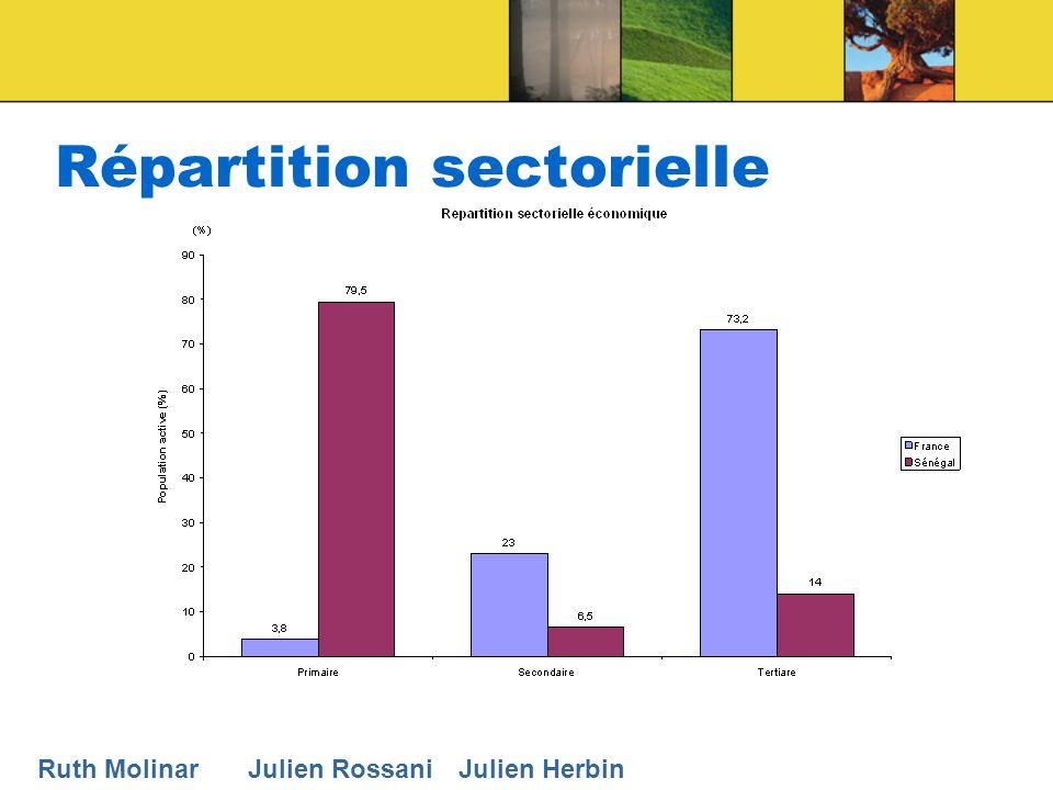 Répartition sectorielle Ruth MolinarJulien RossaniJulien Herbin