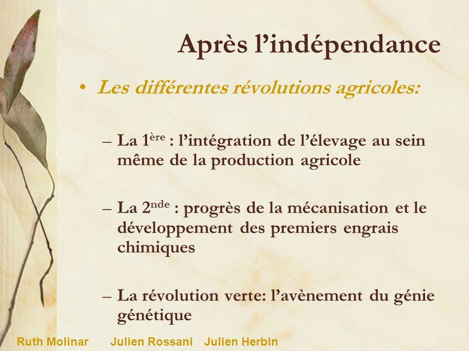 Après lindépendance Les différentes révolutions agricoles: –La 1 ère : lintégration de lélevage au sein même de la production agricole –La 2 nde : pro