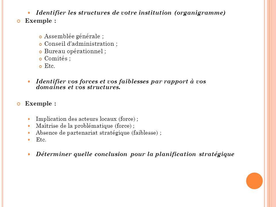 Identifier les structures de votre institution (organigramme) Exemple : Assemblée générale ; Conseil dadministration ; Bureau opérationnel ; Comités ;