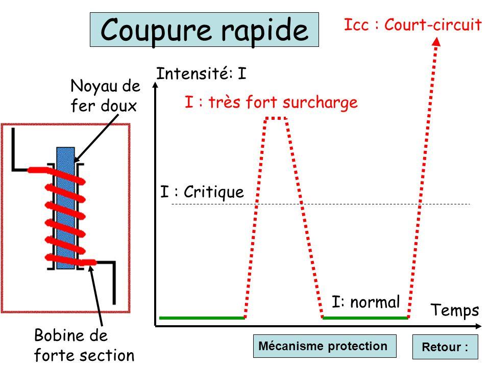 Retour : Temps Intensité: I I : très fort surcharge Icc : Court-circuit I: normal I : Critique Coupure rapide Noyau de fer doux Bobine de forte section Mécanisme protection