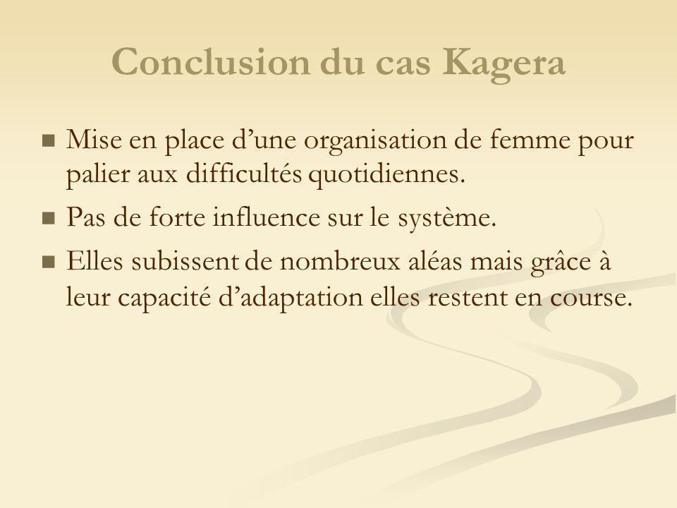 Conclusion du cas Kagera Mise en place dune organisation de femme pour palier aux difficultés quotidiennes. Pas de forte influence sur le système. Ell