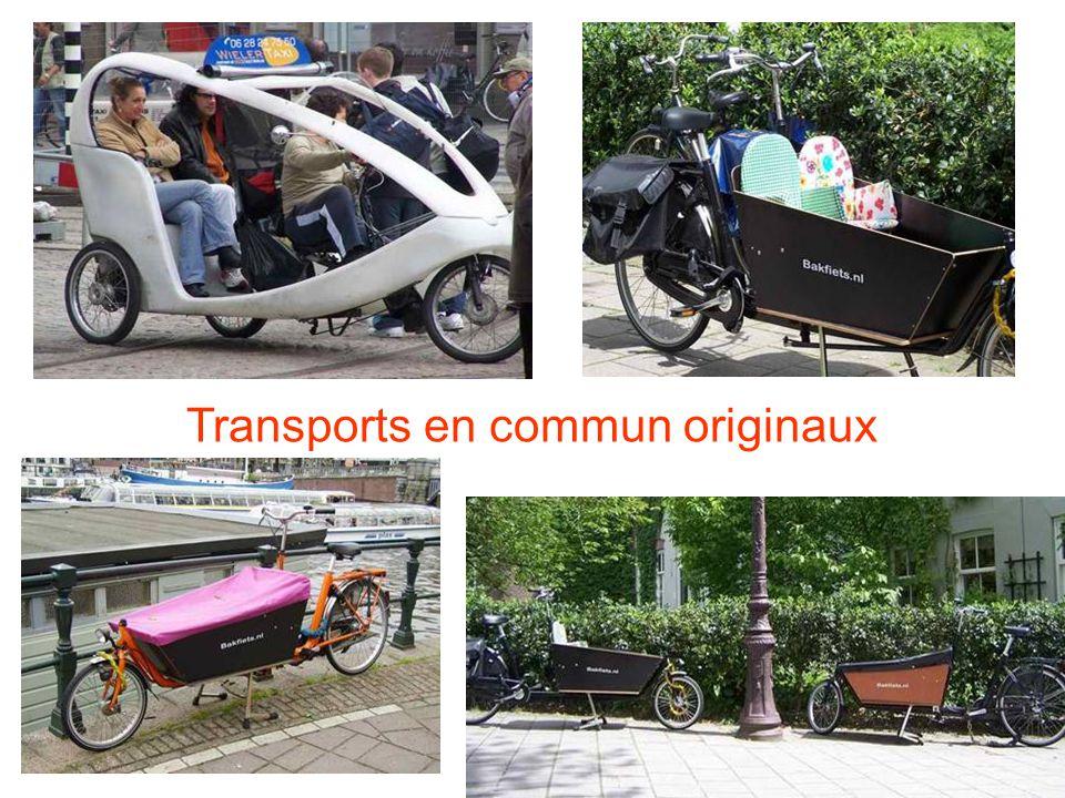 Transports en commun originaux