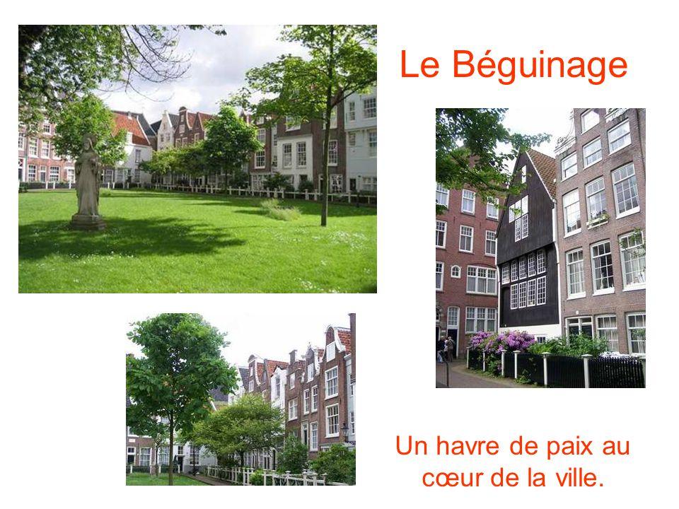 Le Béguinage Un havre de paix au cœur de la ville.